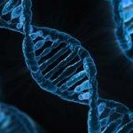 dna e genética